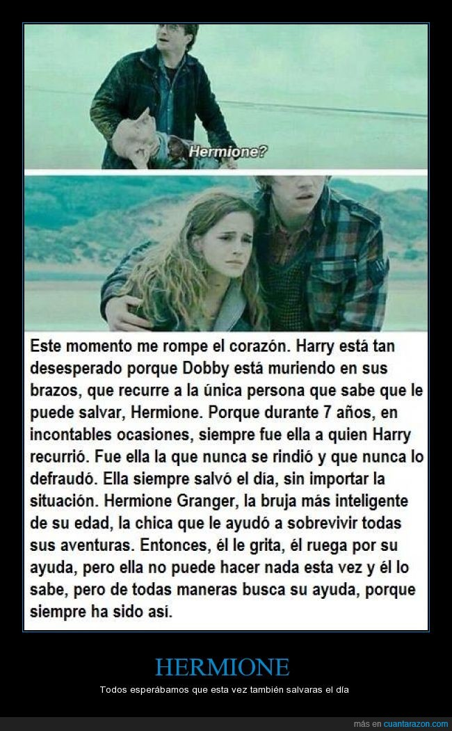 ayuda,Dobby,harry,Harry Potter,Hermione,muerte,pedir,Ron,salvar el día,triste,¡¿por qué?! :(