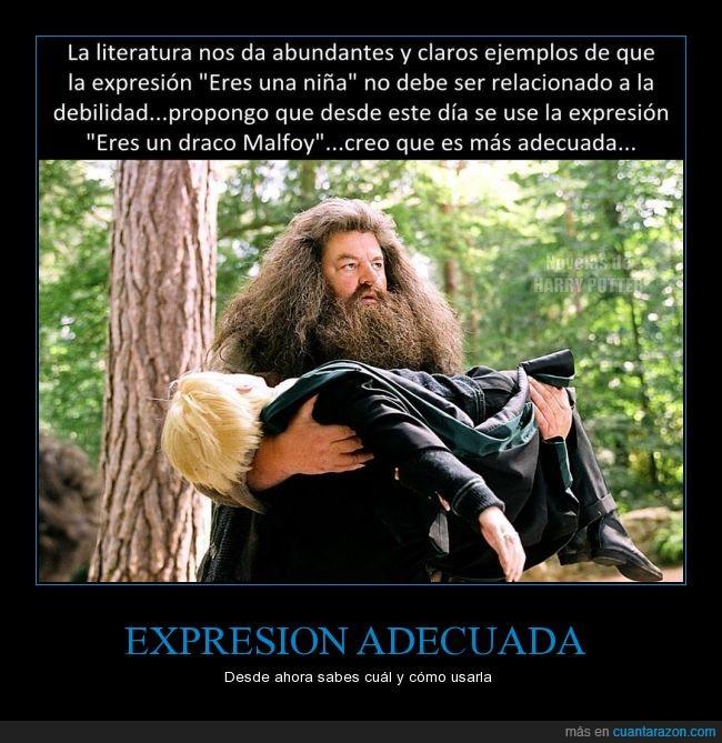 debilidad,Draco Malfoy,Hagrid,Harry Potter,malo,niña,¡Mi padre se enterará de esto!