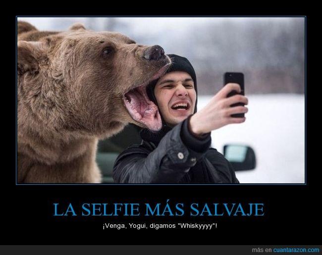 frio,hielo,ignorancia,maaaaaamaaaaa,no le veo dientes,oso,peligro,selfie,win