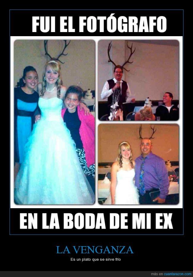 boda,cornamenta,cuernos,ex,fotografo,novia,novio,todos,troll
