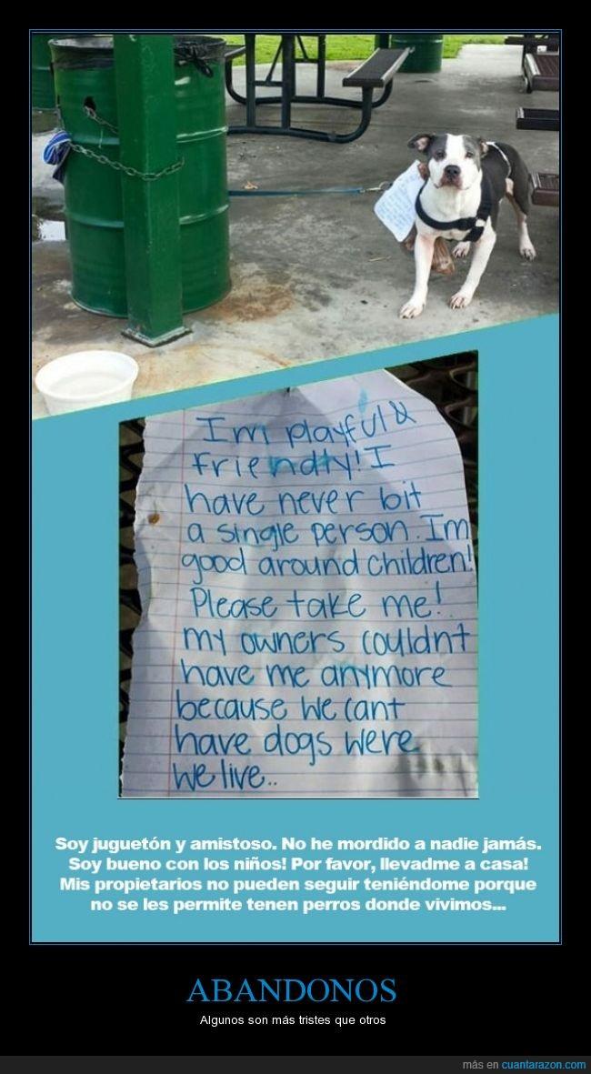 abandonar,abandono,casa,dejar,dueño,mascota,nota,papel,permitir,perro,tener,triste