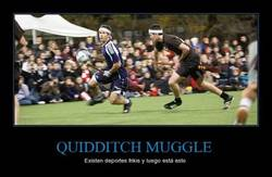 Enlace a QUIDDITCH MUGGLE