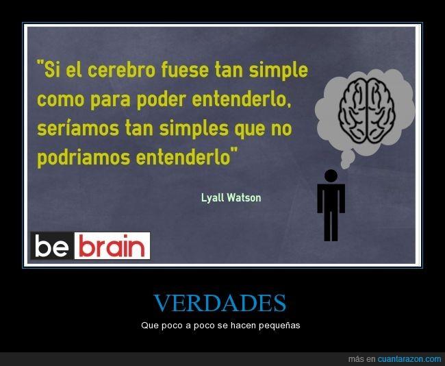 biología,Cerebro,complicado,difícil,entender,fácil,neurociencia,neurona,psicología,sencillo