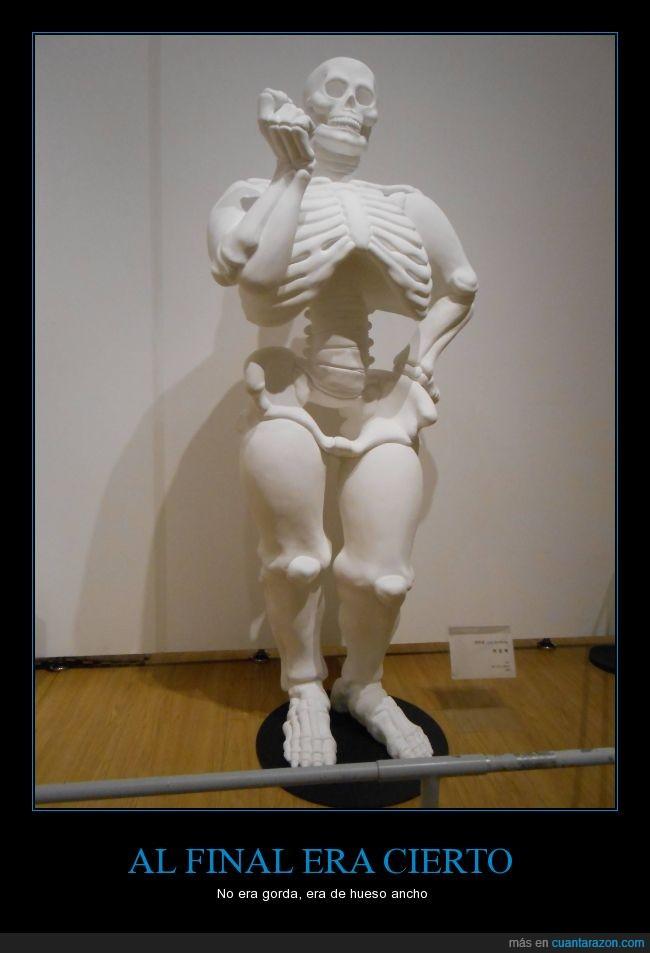 calavera,cuerpo,esqueleto,gorda,gordo,gordos,huesos,museo