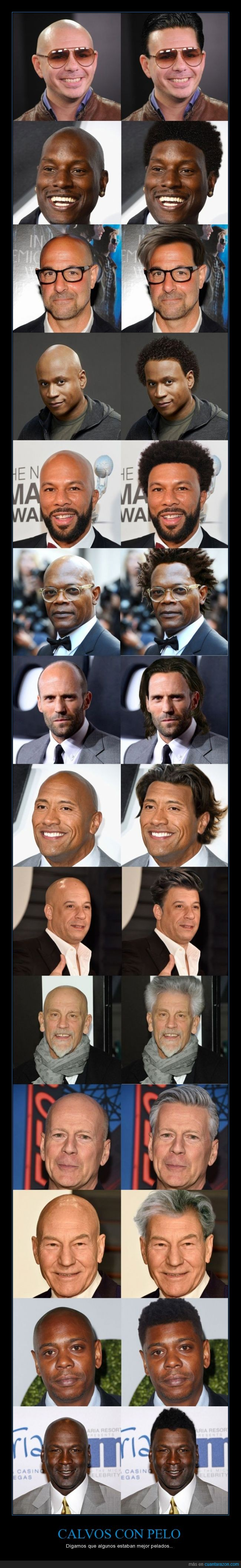 Bruce Willis,calvo,Jason Statham,Jordan está algo desmejoradillo,montaje,pelo,photoshop,Pitbull,rapado,The Rock