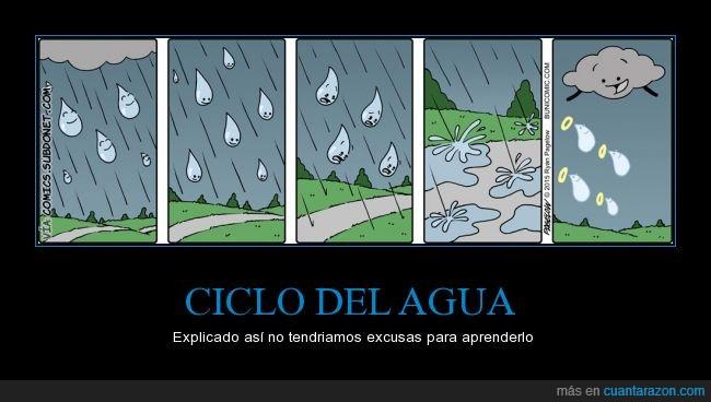 agua,charco,ciclo,cielo,comics,lluvia,nube,sol,subir,vida