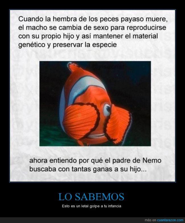 Buscando a nemo,cambiar,cambio,encontrar,especie,genetico,hijo,madre,material,morir,muere,Nemo,padre,payaso,peces,pescado,pez,reproducir