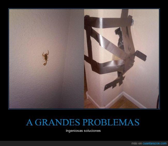 cinta adhesiva,escorpión,humor,lo mejor es emplear un lanzallamas,plato,quemar la casa,tapar,terror