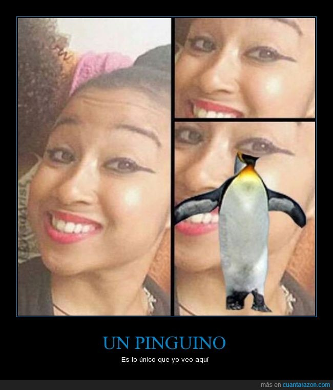 dijo,eyeliner,lineas,maquillaje,ojos,pinguino,pintura,sombras