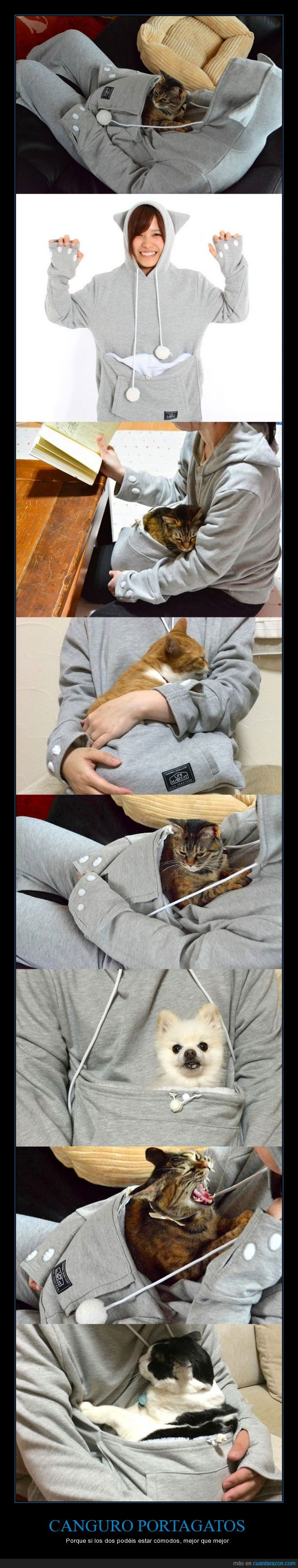 bolsillo,canguro,comodo,dormir,japon,jersey,mascota,perro,portagatos,sudadera