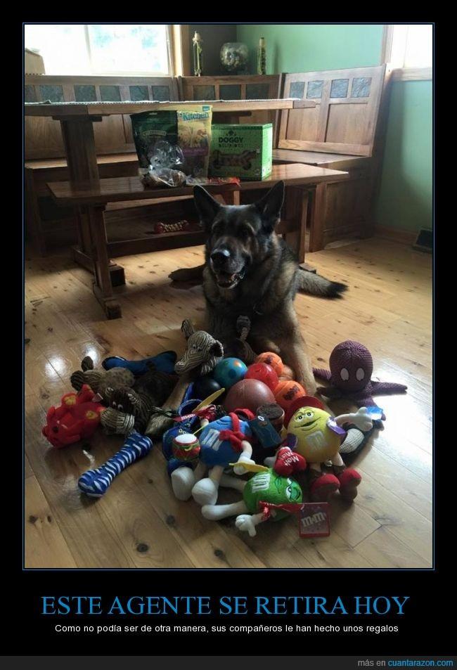 agente,muñeco,pastor aleman,perro,policía,premio,regalo,retira,retirada,retirar