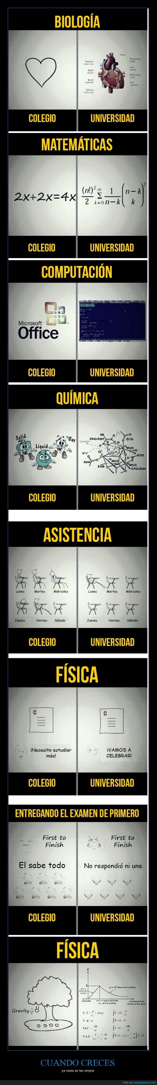 colegio,diferencias,dificil,dificultad,fisica,imposible,matematicas,universidad