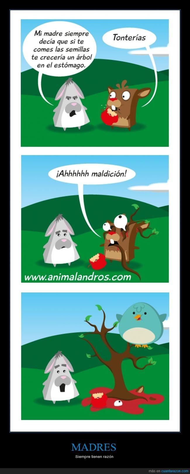 ave,bestia,comer,crecer,dentro,manzana,manzano,matar,sangre,semilla