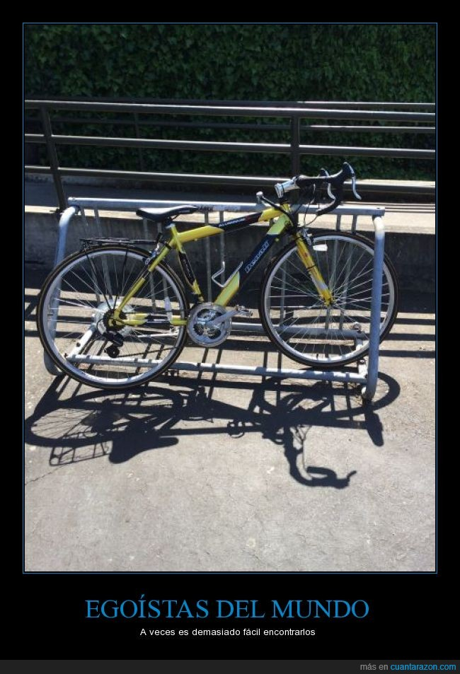 bici,bicicleta,egoismo,egoista,ocupar espacio,rack,todo