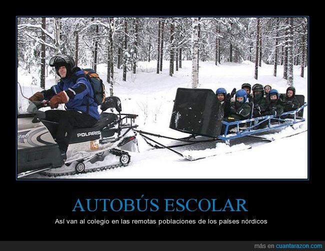 autobus,colegio,motonieve,nieve,niños,nordicos,trineo