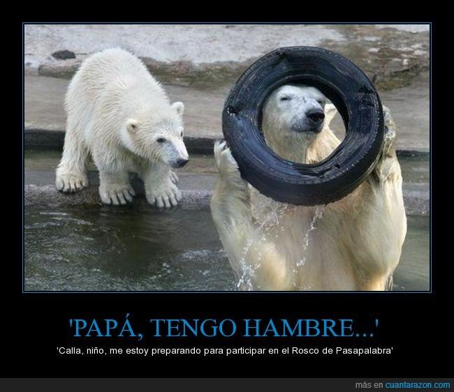 hijo,jugar,neumatico,oso,padre,pasapalabra,polar,rosco,rueda