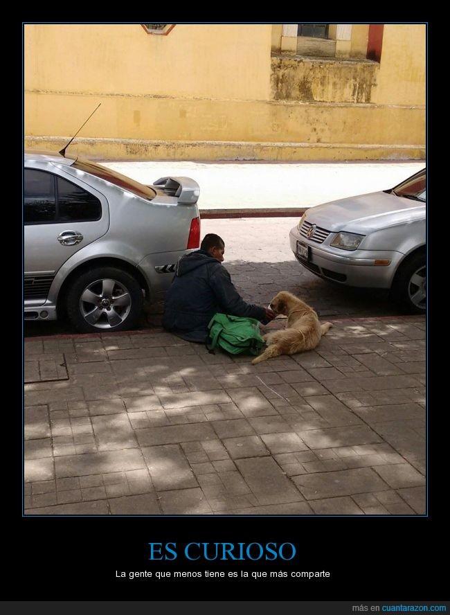 altruismo,amor,animal,comer,dinero,homeless,mendigo,perro,pobre,sintecho