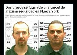 Enlace a PRISON BREAK