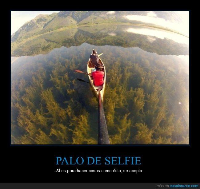 agua,debajo,foto,lago,paisaje,palo,planta,precioso,selfie