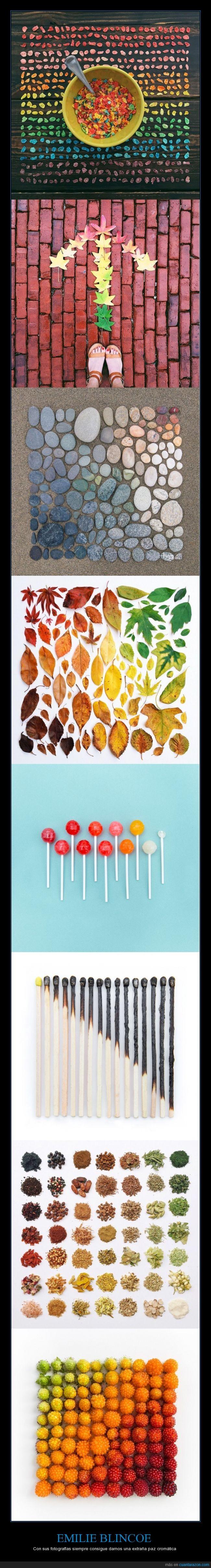 arcoiris,arrange,color,cromatico,Emilie Blincoe,ocd,ordenar,order,toc