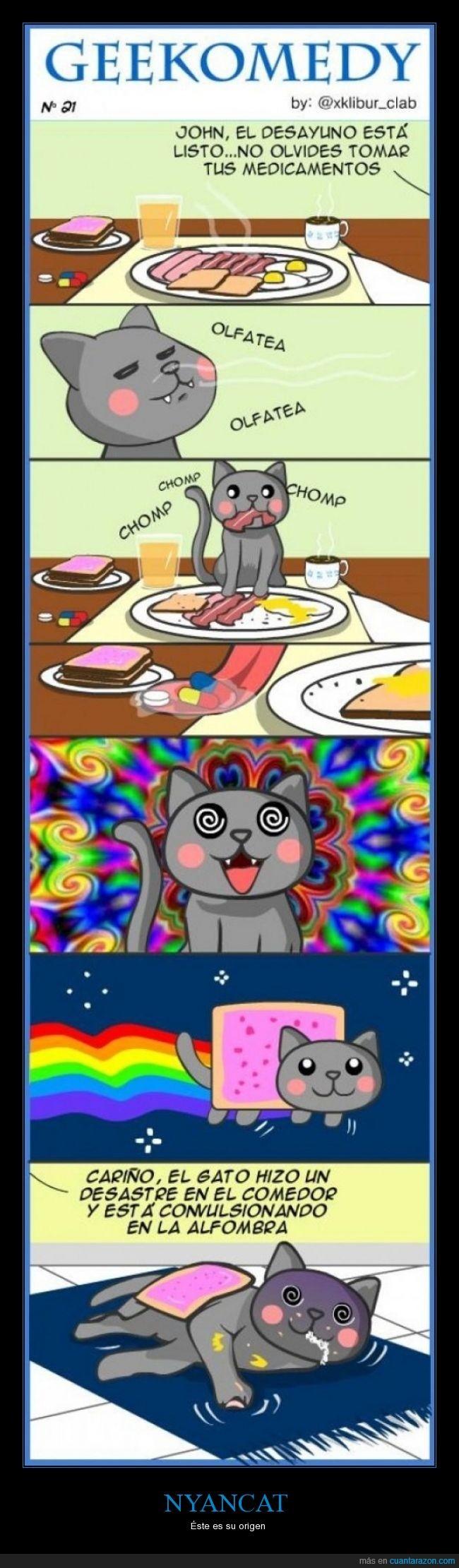 cielo,desayuno,droga,medicina,nyan cat,nyan-cat,nyancat,origen,pastilla,poptart,universo