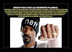 Enlace a Snoop Dogg (o Lion) es más que rimar palabrotas al parecer