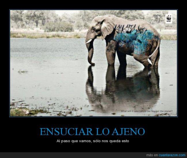 elefante,graffiti,pintada,pintar,wwf