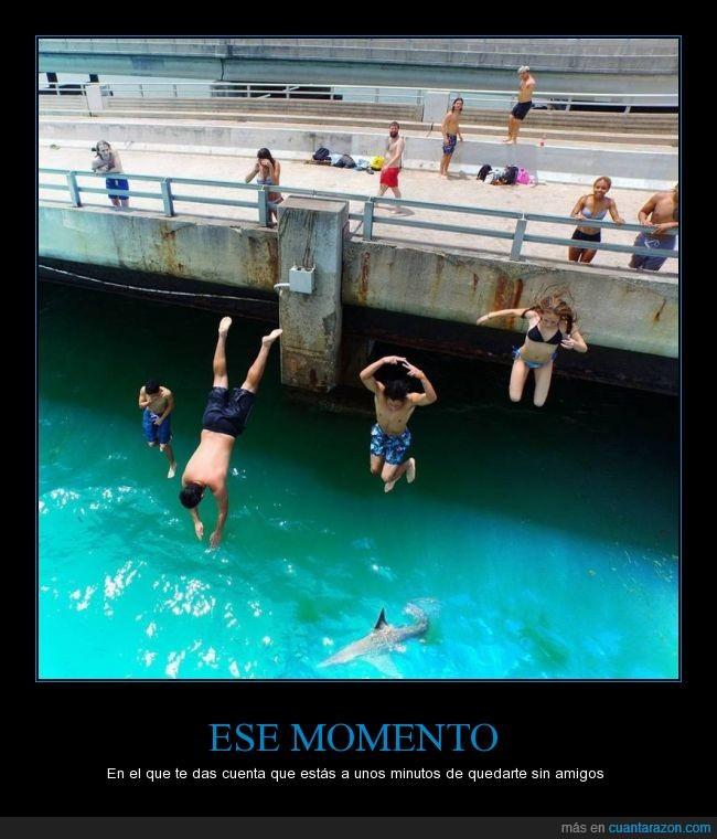 amigo,amistad,brinco,clavado,comer,debajo,mar,miedo,puente,ría,saltar,Salto,tiburón