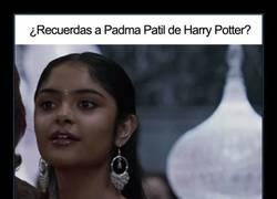 Enlace a ¿Qué les daban de comer en el rodaje de Harry Potter?