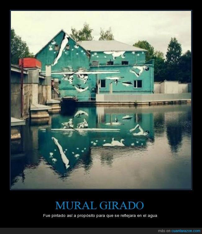 arte,casa,graffiti,lago,Mural,reflejar,reflejo,remar,remo