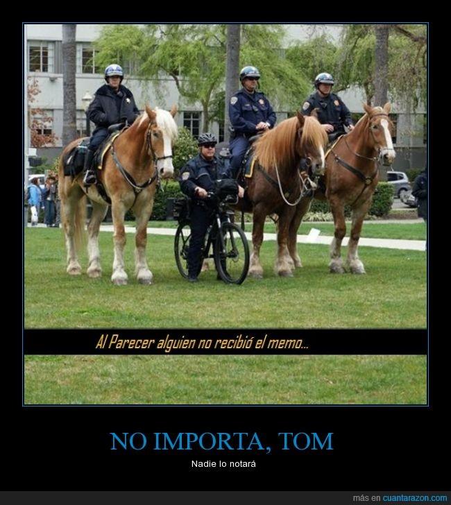 bicicleta,caballo,ruedas de lujo,Saludos a todos