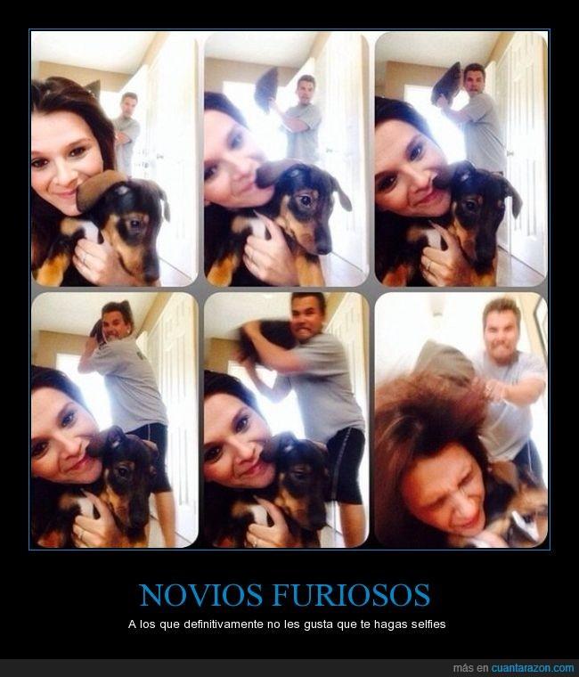 arruinar,atacar,ataque,cojín,fail,Foto,furioso,novio,perro,selfie