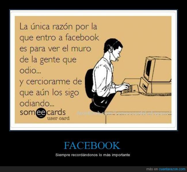 asegurar,cerciorar,facebook,gente,odiando,odiar,odio,seguir,sigo