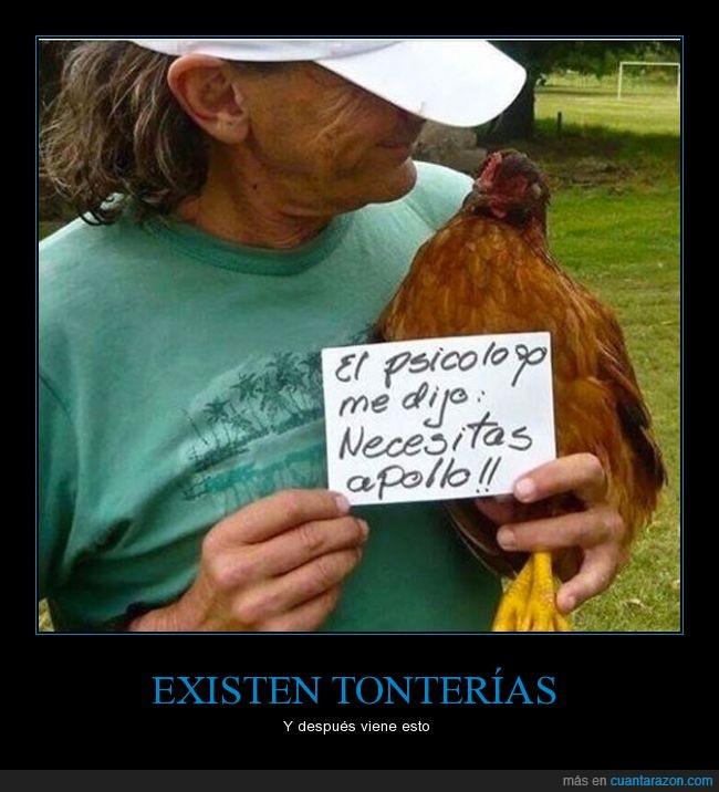 a pollo,absurdo,apoyo,campo,gallina,Pollo,psicológicos,psicólogo,tonto
