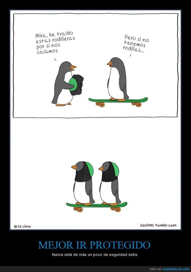 adorable,casco,cute,lizclimo,mono,patin,pingüino,rodilla,rodillera,skate,skateboard