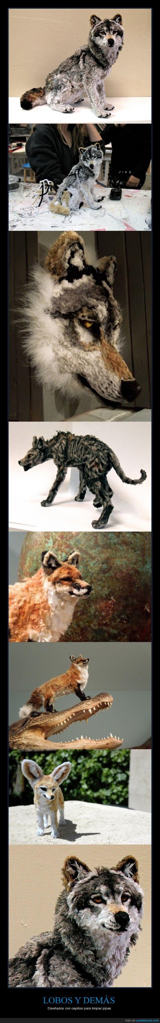 cepillos,fenic,grandioso,Lobo,perro,pipa,zorro