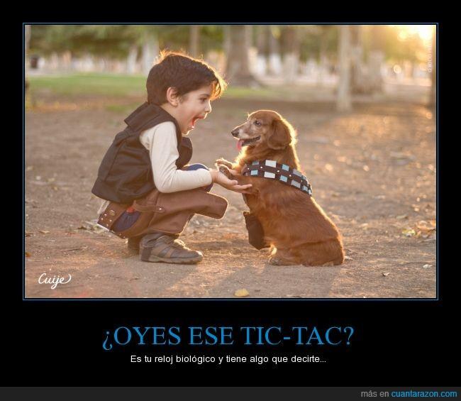 Chewbacca,cosplay,crio,disfraz,feliz,Han Solo,niño,perro,Star Wars