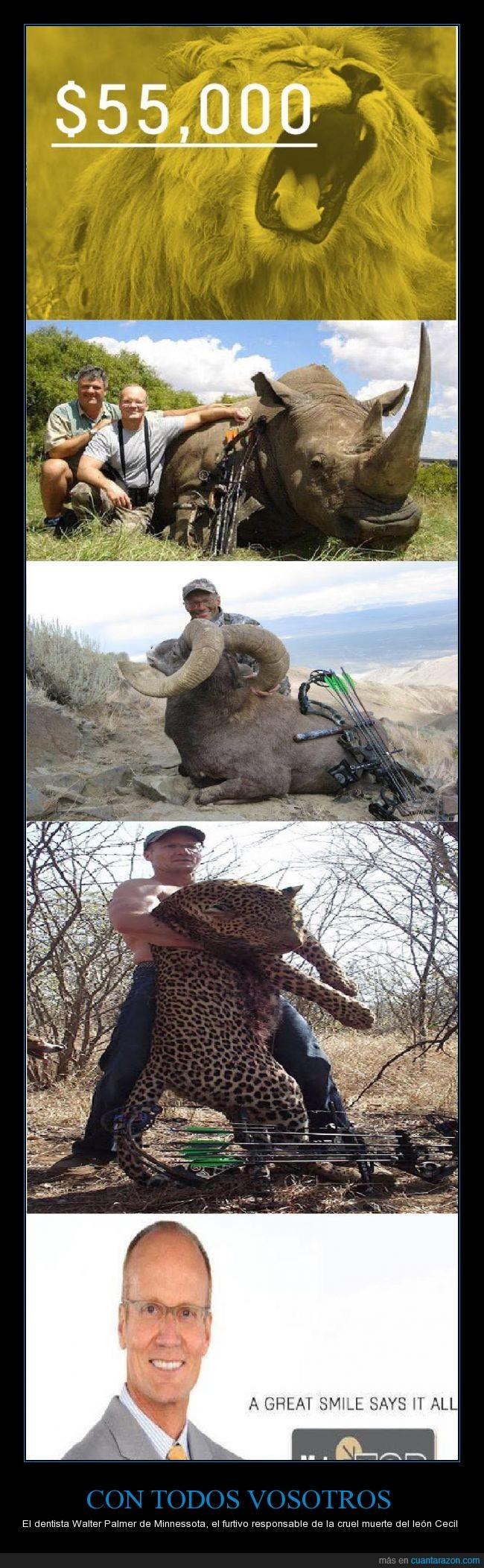 caza,cecil,dentista,furtivo,león,Walter Palmer,zimbawe