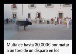 Enlace a Multa de hasta 30.000€ por matar a un toro de un disparo en los Sanjuanes 2015