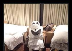 Enlace a EMPLEADOS HOTEL TROLLS