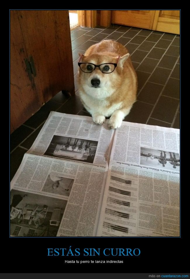 desempleo,leer,periodico,perro,trabajo