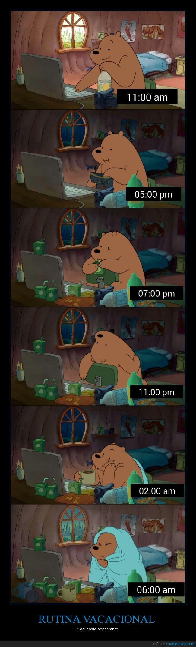 CN,desvelar,diario,osos,Rutina