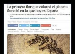 Enlace a En España fuimos los primeros en...
