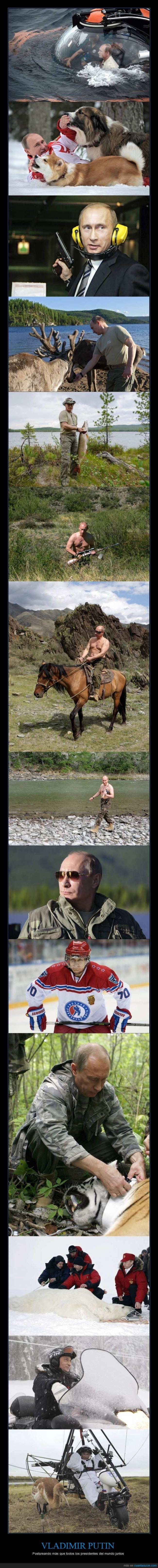 animal,el lucio tuvo menos suerte,james bond,oso y tigre de reserva pero no cazados,presidente,rusia,ruso,vladimir putin