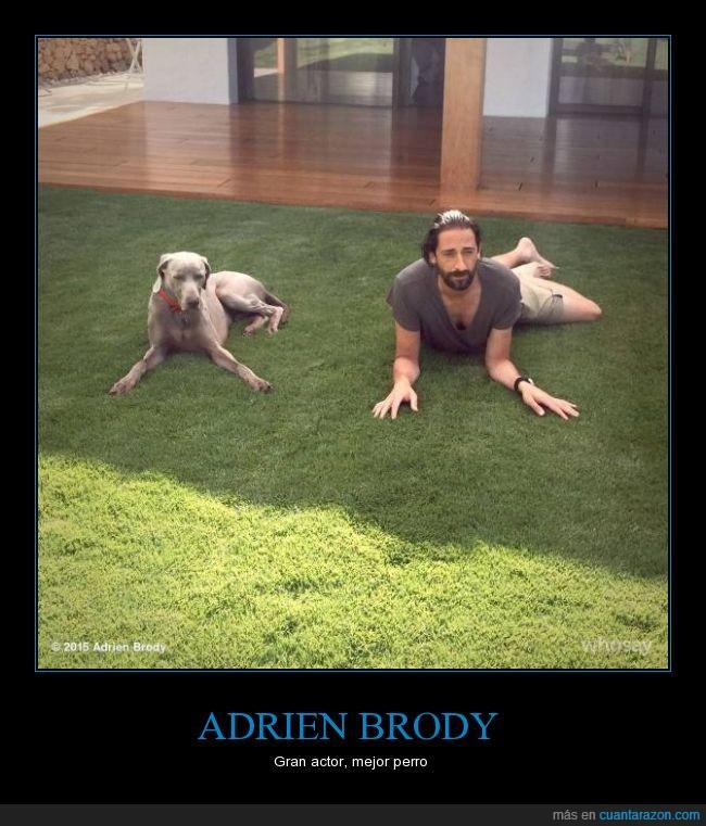 actor,adrien brody,imitar,perro,posición