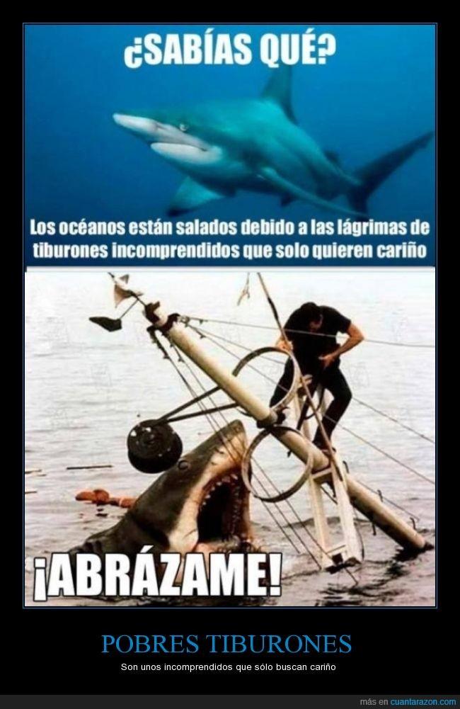 abrazos,amor,cariño,incomprendidos,tiburones