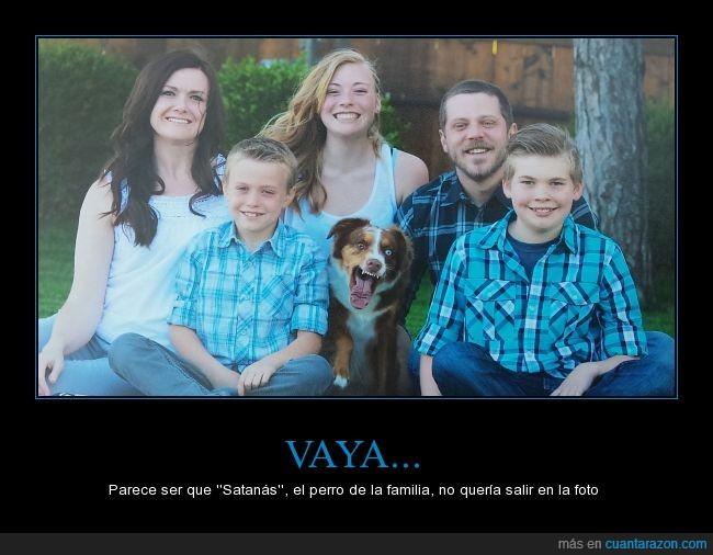 camisa,can,cara,enfadado,familia,Fotografía,ladrar,ladrido,perro,recuerdo