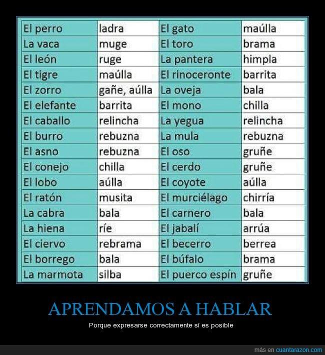 Consejos,español,nombre,onomatopeya,real,ruido,sonido,sonidos de animales