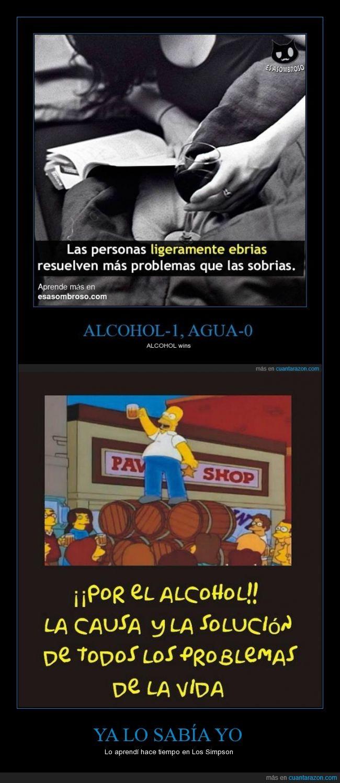alcohol,causa,Homer,problema,simpson,solucion,todos