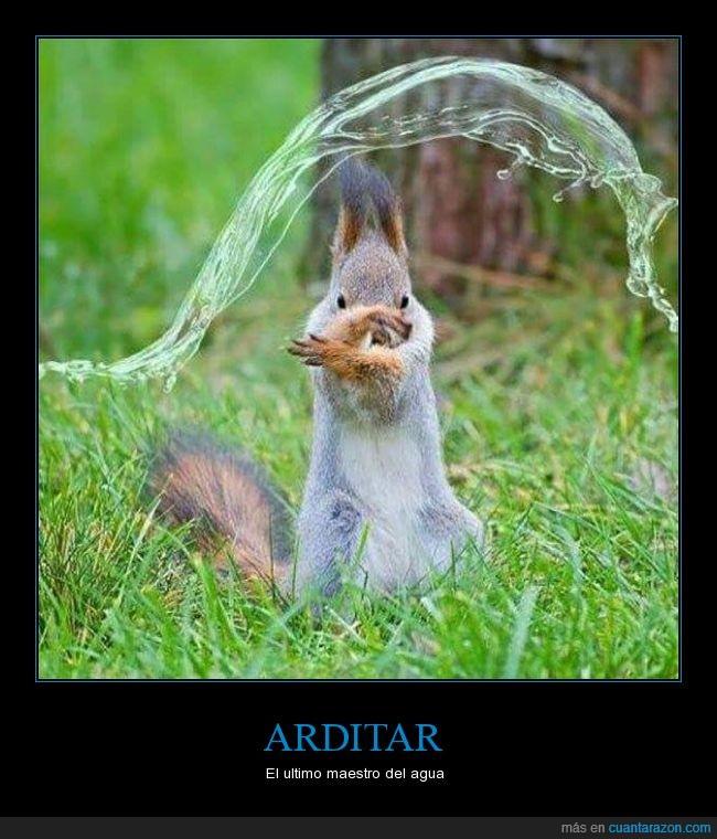 a ver si es mejor que la otra que hicieron,agua,Ardilla,avatar,elementos,Kung fu,waterbender